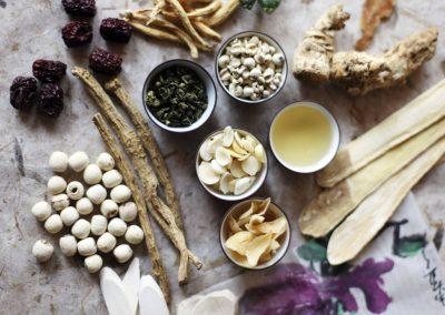 Herbal+Medicine